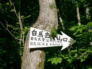 07_tozan5_haku004