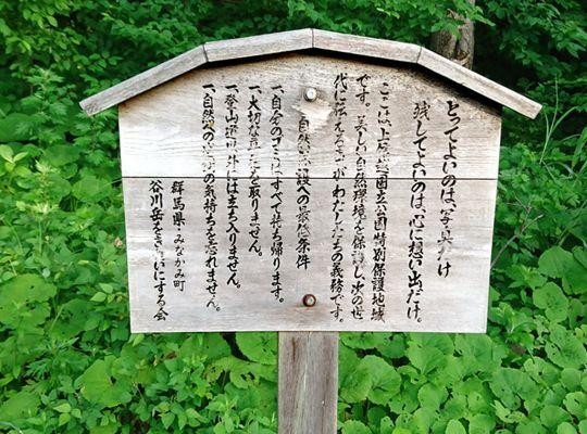 谷川岳 2018.07.03 (17)a