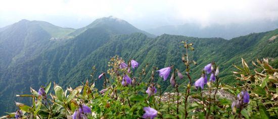 谷川岳 2018.07.03 (82)b