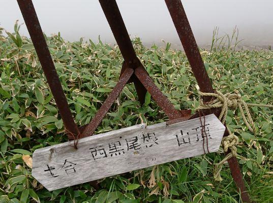 谷川岳 2018.07.03 (115)a