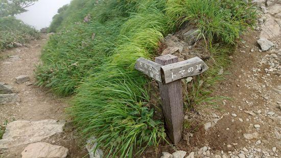 谷川岳 2018.07.03 (131)a