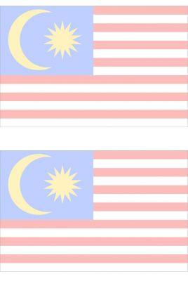 2019 Malaysia国旗 2薄