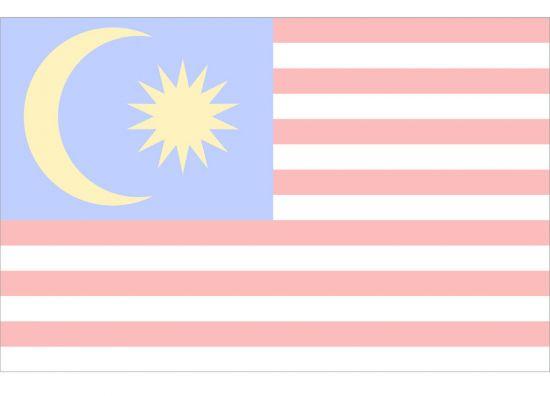 2019 Malaysia国旗 1薄